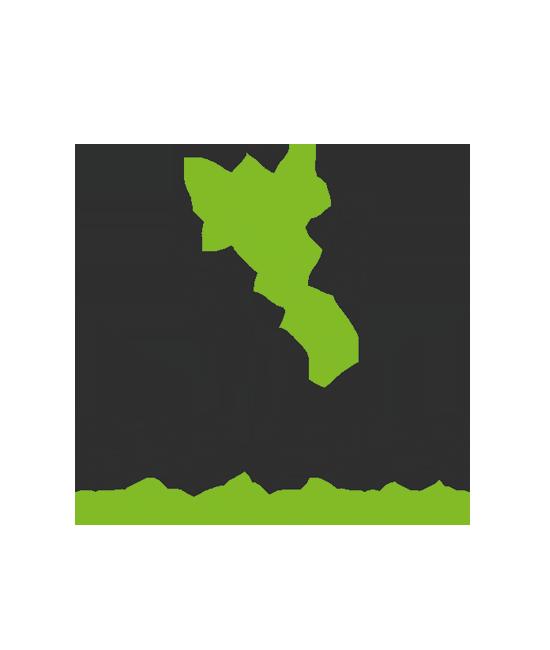 Logo DutchStemCell